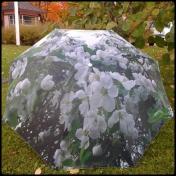 Rautatienomenapuu sateenvarjo