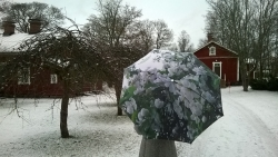 Apple Tree Umbrella